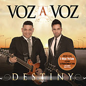 Destiny by Voz A Voz