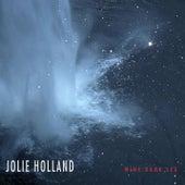 Dark Days by Jolie Holland