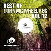 Best of Turning Wheel Rec, Vol. 12 by Various Artists