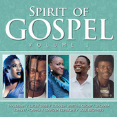 Spirit of Gospel, Vol. 1 by Various Artists