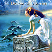To Dream of Dolphins by Jamie Llewellyn