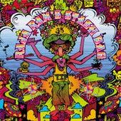 Raja Ram's Stash Bag - EP by Various Artists