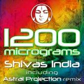 Shivas India by 1200 Micrograms