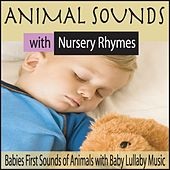 Animal Sounds With Nursery Rhymes: Babies First Sounds of Animals With Baby Lullaby Music by Robbins Island Music Group