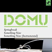 Springbreak/Something New by Domu