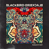 Tangerine Sky by Blackbird Blackbird