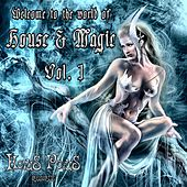 World of House & Magic Vol.1 by Various Artists