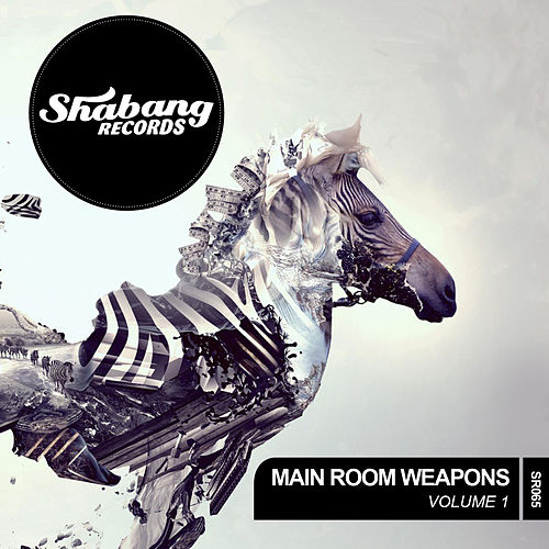 Main Room Weapons Vol. 1 by Various Artists