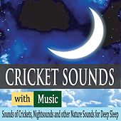 Cricket Sounds With Music: Sounds of Crickets, Nightsounds and Other Nature Sounds for Deep Sleep by Robbins Island Music Group