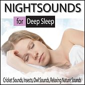 Nightsounds for Deep Sleep: Cricket Sounds, Insects, Owl Sounds, Relaxing Nature Sounds by Robbins Island Music Group