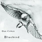 Bluebird by Dan Cohen