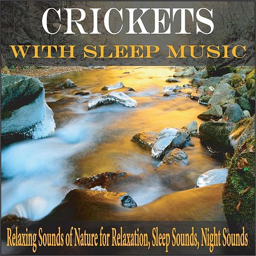Crickets With Sleep Music: Relaxing Sounds of Nature for Relaxation, Sleep Sounds, Night Sounds by Robbins Island Music Group