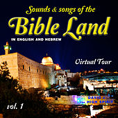 Sounds & Songs of the Bible Land, Vol. 1 by David & The High Spirit