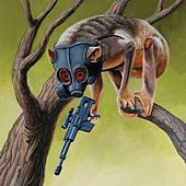Sunny Day Real Estate / Circa Survive - Split by Various Artists
