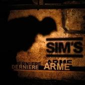 Dernière arme by Sims