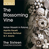 The Blossoming Vine: Italian Maestri in Poland by Eamonn Dougan
