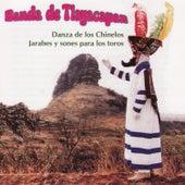 Danza De Los Chinelos by Banda De Tlayacapan