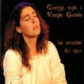 Los Secretos Del Agua by Carmina Cannavino
