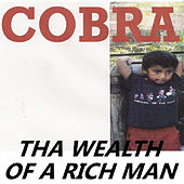 Tha Wealth of a Rich Man von Cobra