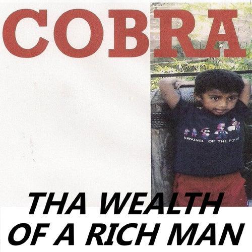 Tha Wealth of a Rich Man by Cobra