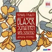 Strauss: Bläsersonatinen by Armonia Ensemble