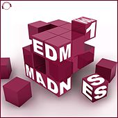 EDM Madness, Vol. 1 by Various Artists