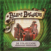 Polkas Bailables by Various Artists