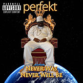 Never Was, Never Will Be by Perfekt