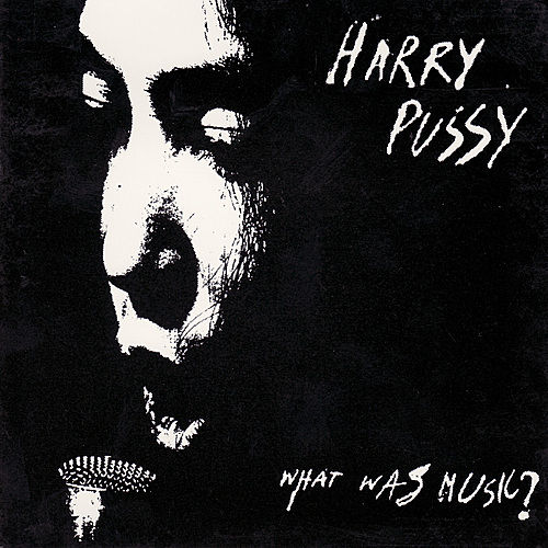 What Was Music? by Harry Pussy