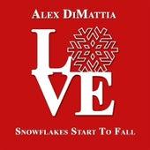 Snowflakes Start to Fall by Alex DiMattia