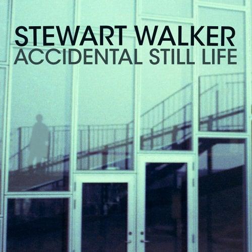 Accidental Still Life by Stewart Walker