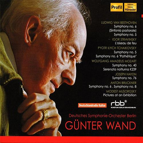 Günter Wand: Orchestral Recordings by Deutsches Symphonie-Orchester Berlin