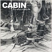 It Is What It Looks Like by Cabin