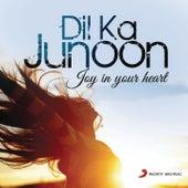 Dil Ka Junoon by Various Artists