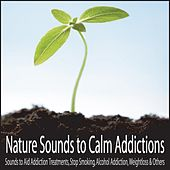 Nature Sounds to Calm Addictions: Sounds to Aid Addiction Treatments, Stop Smoking, Alcohol Addiction, Weightloss & Others by Robbins Island Music Group