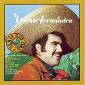 Vicente Fernandez (3rd Album) by Vicente Fernández