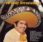 Vicente Fernandez Con Mariachi (4th Album) by Vicente Fernández