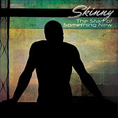 The Start of Something New by Skinny