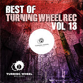 Best of Turning Wheel Rec, Vol. 13 by Various Artists