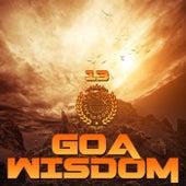 Goa Wisdom, Vol. 13 by Various Artists