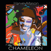 Chameleon by Harvey Mason