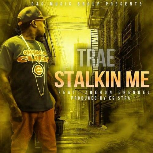 Stalkin Me (feat. Zoehon Grendel) by Trae