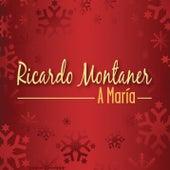A María by Ricardo Montaner