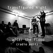 After the flood (radio edit) by Transfigured Night