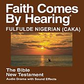 Fulfulde Nigerian (Caka) New Testament (Non-Dramatized) by The Bible
