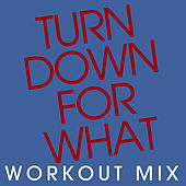 Turn Down for What - Single by Chani