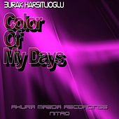 Color Of My Days by Burak Harsitlioglu