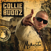 Mamacita by Collie Buddz