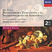 Bach, J.S.: Brandenburg Concertos etc. by Various Artists