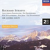 Strauss, R.: Ein Heldenleben; Also Sprach Zarathustra; Don Juan, etc. by Various Artists